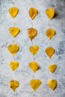 乾燥した葉で作られた秋の組成