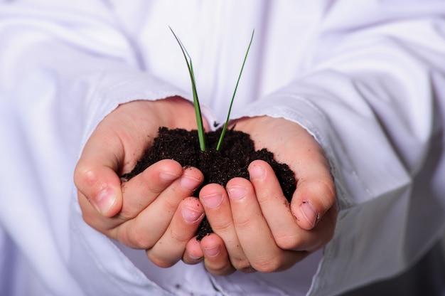 若い植物を手で保持しているアラビア語の少年。