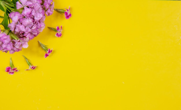 黄色の背景に平面図コピースペースピンクの花