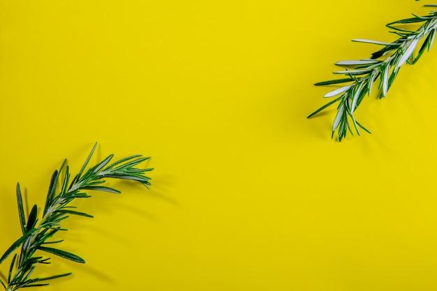 黄色の背景に平面図コピースペースローズマリーの枝