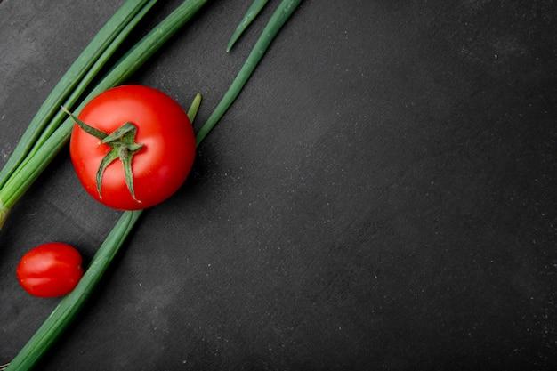 トマトとネギとして野菜の平面図、左側の黒い面