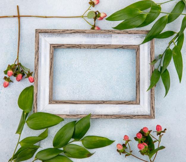 白い表面に分離した葉とピンクのオトギリソウ果実のトップビュー