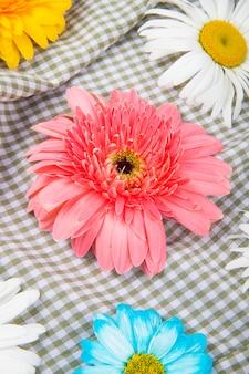 チェック柄のファブリックの背景にデイジーの花とカラフルなガーベラの花の側面図