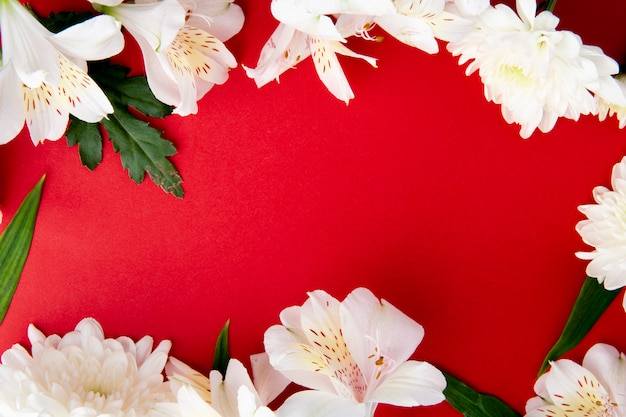 Вид сверху рамы из альстромерии белого цвета с цветами хризантемы на красном фоне с копией пространства