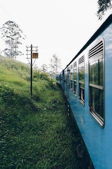 Синий поезд пересекает чайную плантацию в азии