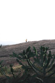 スリランカの山をハイキングする男