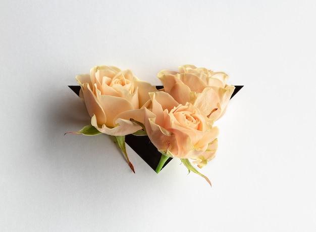 ホワイトペーパーの背景に三角形からバラが突き出ています。