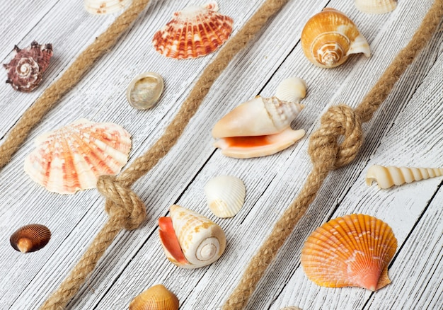 Морские раковины и веревки на легкий деревянный стол