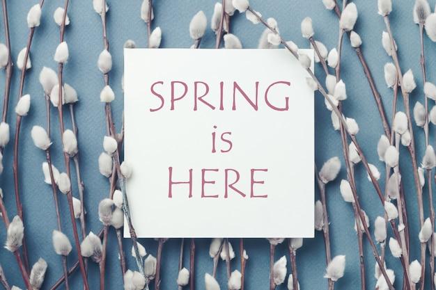 Ветви вербы и открытка с надписью весна здесь. концепция весны