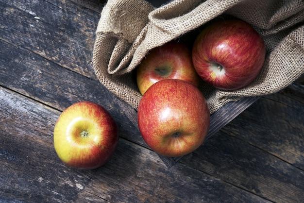 Органические яблоки на дереве