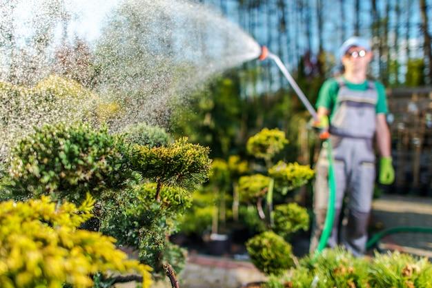 Садовник поливает растения в саду магазина.