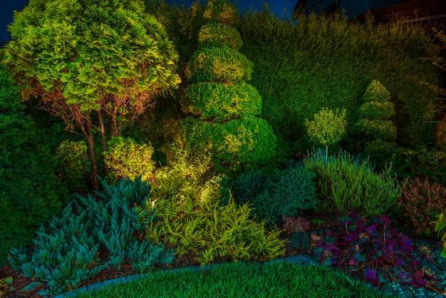 裏庭の庭は照明照明を導きました