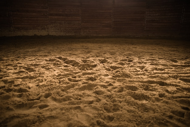 真ん中の光スポットと砂浜の乗馬アリーナ