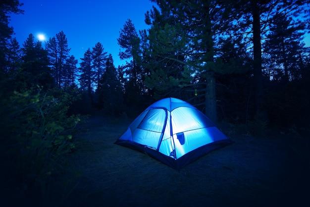 森林キャンプ - テント