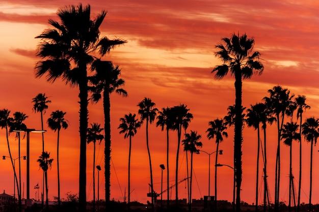 カリフォルニアサンセットの風景
