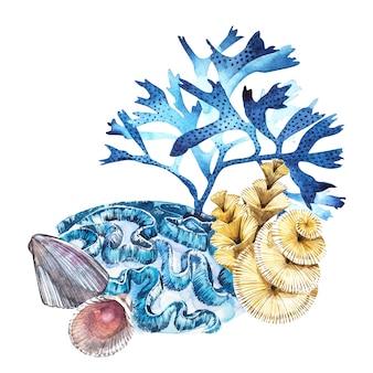 組成海藻の海の生物とサンゴ。水彩の手描きのイラスト。水中水彩イラスト。
