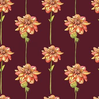 Акварель оранжевые георгины. бесшовные модели комплект полевого цветка изолированный на белизне. ботаническая акварель иллюстрации, букет оранжевые георгины, деревенские цветы георгины.