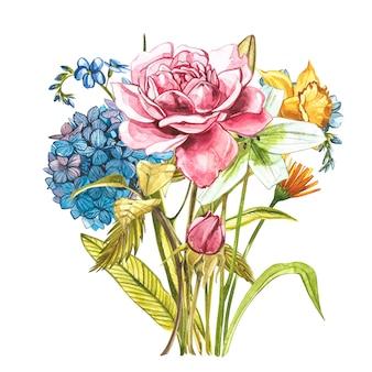 ピンクの野生のバラ、アジサイ、スイセンと水彩の花束。白で隔離される野生の花セット。植物の水彩イラスト、バラの花束、素朴な花。白で隔離