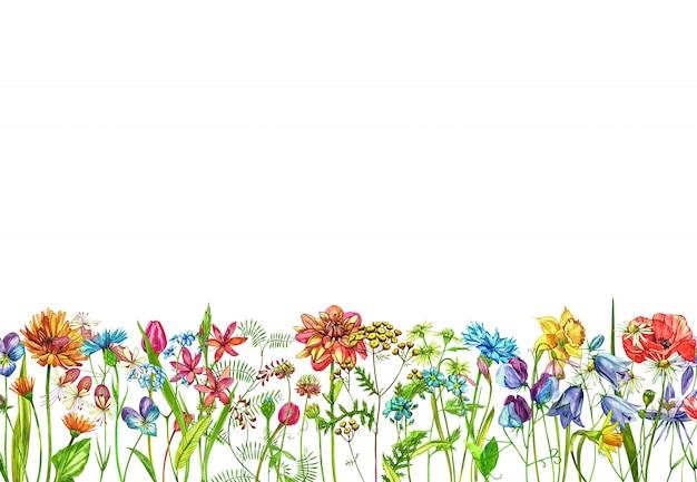 手の水彩画のコレクションには、花とハーブが描かれています。
