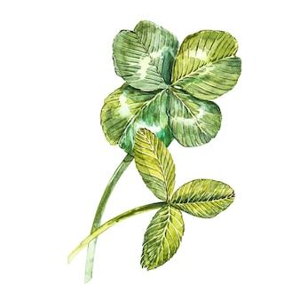 クローバーの葉のセット-四つ葉と三葉。水彩イラスト。デザイン要素ハッピー聖パトリックの日