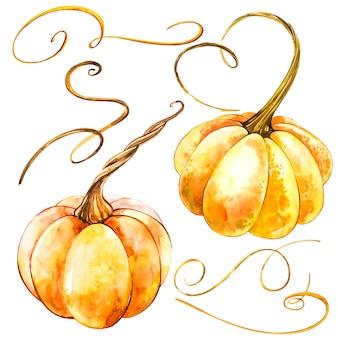かぼちゃ。手は、白の水彩画を描いた。水彩イラスト。