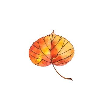 Осенний лист - липа. осенний кленовый лист изолированы. акварельные иллюстрации
