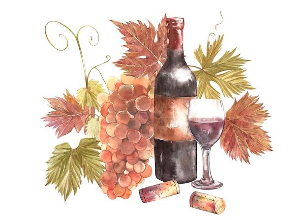 ボトルとグラスのワインとブドウの品揃え、白い背景で隔離。手描き水彩イラスト。