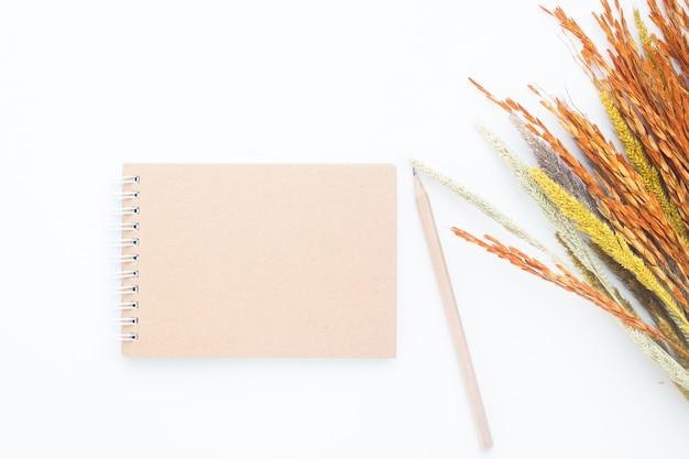 クラフト、ノート、鉛筆、乾燥した、花、白、背景、コピー、スペース