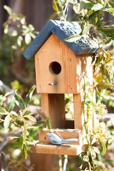 庭の鳥の家のクローズアップ
