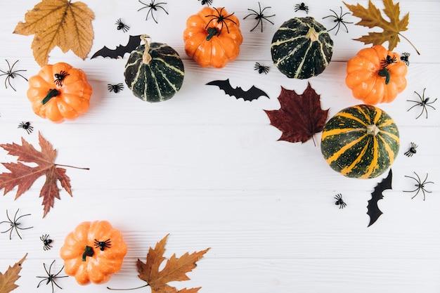 Тыквы, сушеные листья, пауки и летучие мыши на белом деревянные