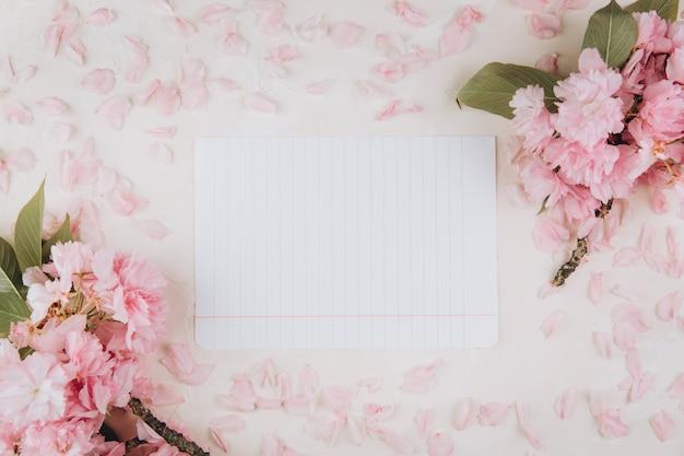 Веточки сакуры с цветами и лепестками вокруг чистого листа