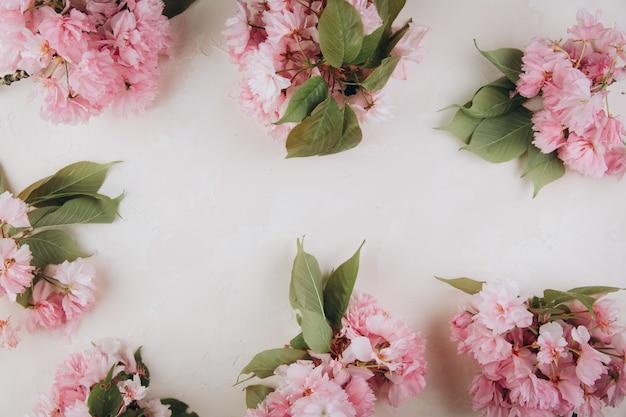 Веточки сакуры с цветами и лепестками