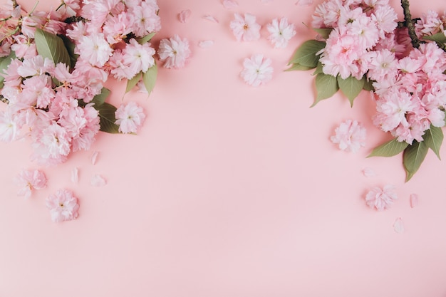 Веточки сакуры с цветами и лепестками на розовом фоне