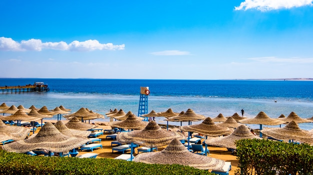Побережье с пляжными зонтиками