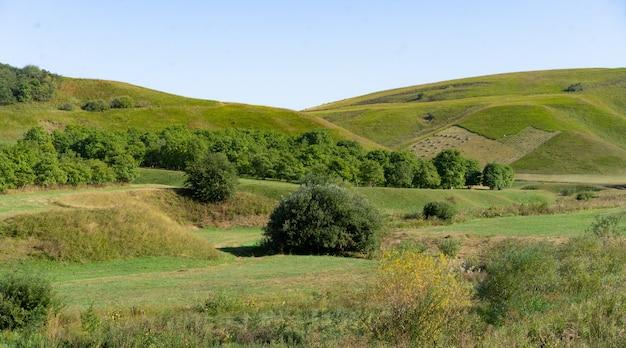 秋の丘陵地帯の風景