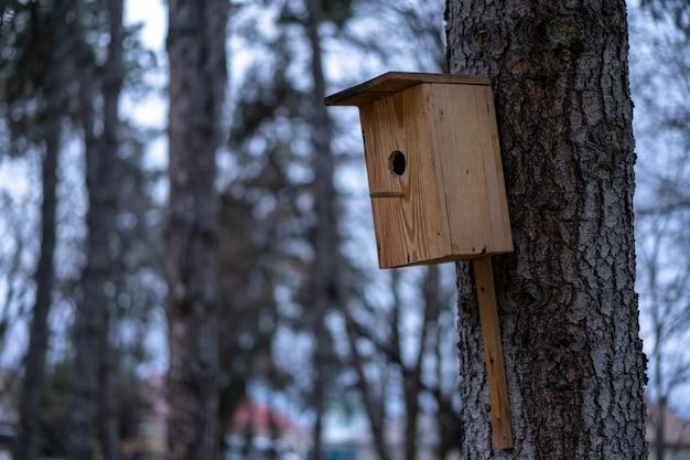Скворечник установлен на дереве
