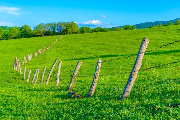 Забор из бревен на фоне неба