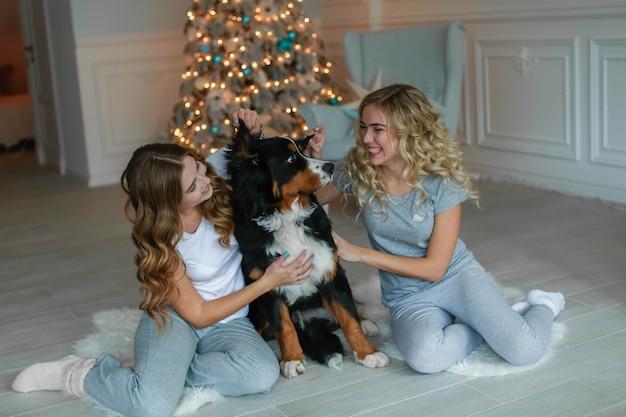 Две женщины в новогоднюю ночь играют с домашним животным крупной породистой собакой.