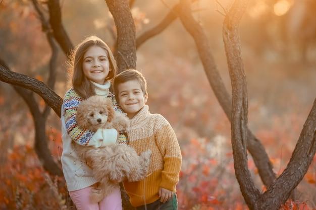 秋の夕日の光線でペットと一緒に森に立つ兄と妹