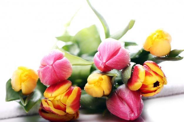 チューリップ、色とりどりのチューリップ、自然の背景の美しい花束