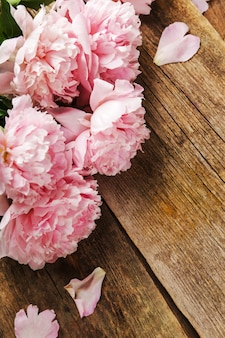 新鮮な美しい牡丹の花