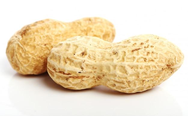 新鮮なピーナッツ