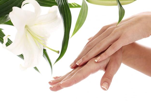 女性の手とリリーの花