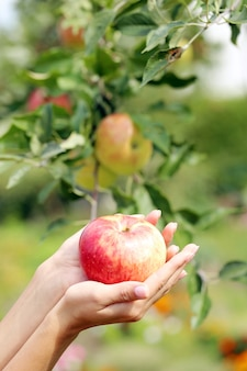 手とリンゴ