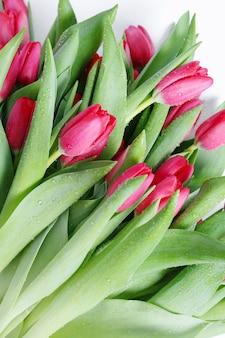 チューリップの美しい花束