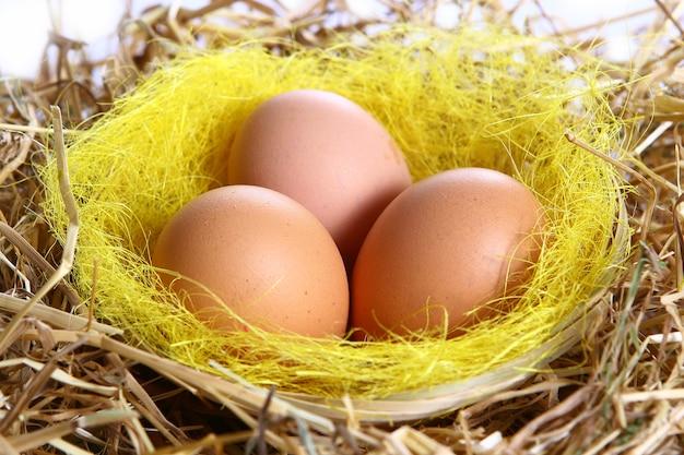 Органические яйца в желтой траве