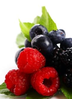 白で新鮮な森の果実