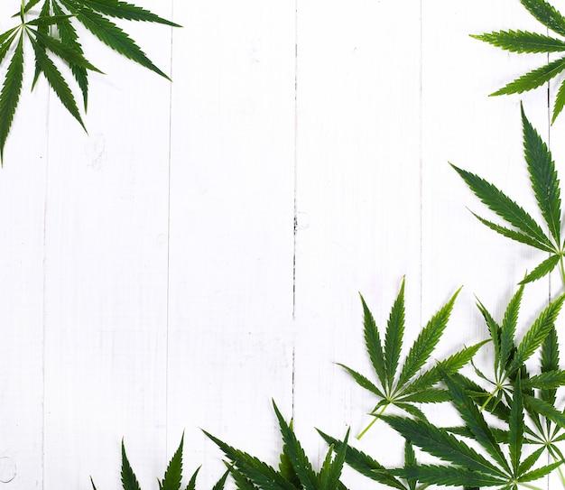 大麻葉植物の背景