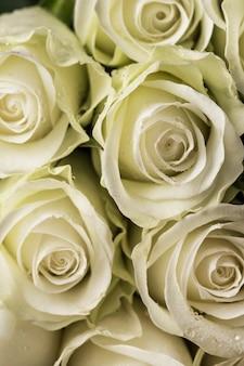 白いバラの花束