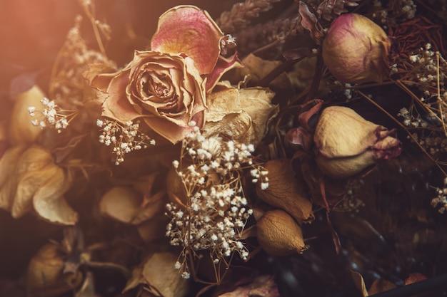 Различные сухие цветы захватили через стекло